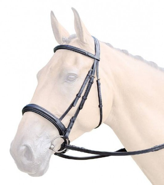 Bridleway Lavello Padded Crank Cavesson Bridle