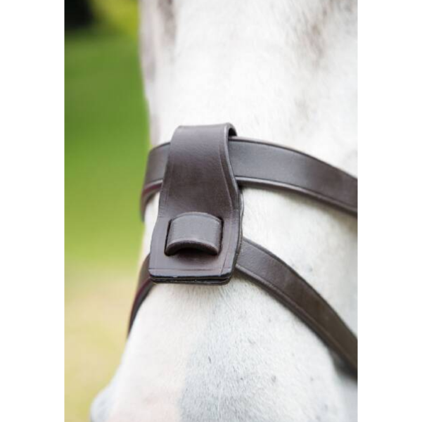 Shires Blenheim Leather Flash Attachment