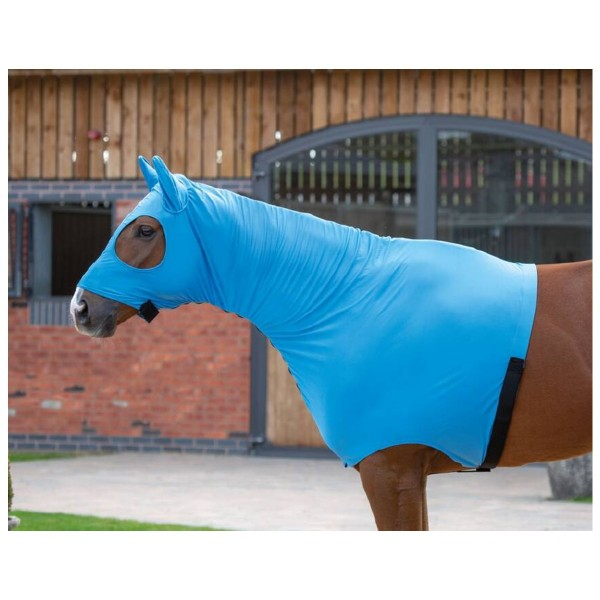 Shires Stretch Hood With Full Face Blue