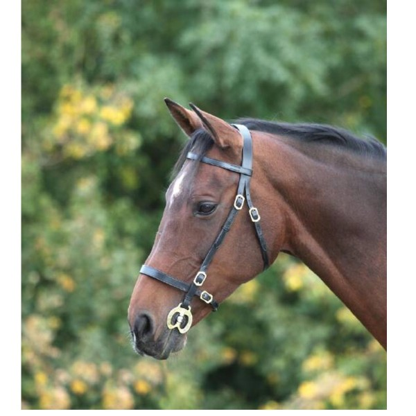 Shires Blenheim Leather Plain Inhand Bridle Black