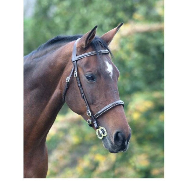 Shires Blenheim Leather Fancy Stitched Inhand Bridle Black
