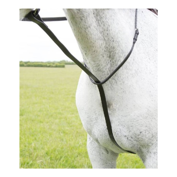 Shires Blenheim Leather Standing Martingale