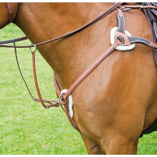 Shires Avignon Leather 5 Point Breastplate