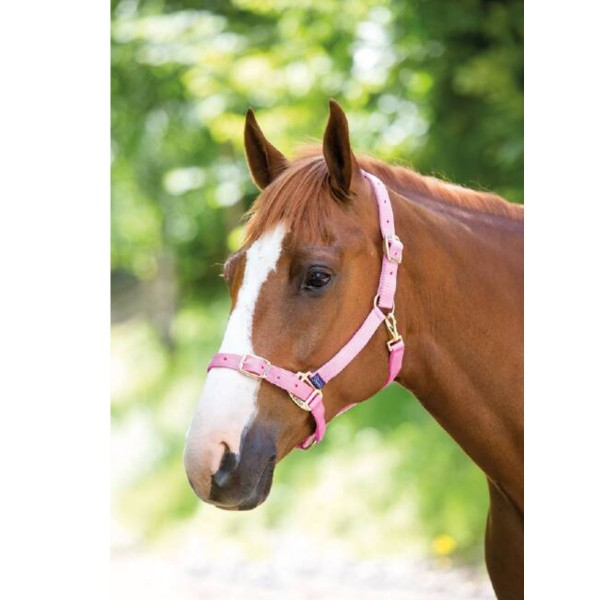 Shires Adjustable Headcollar Pink